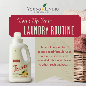 thieves laundry-soap
