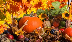 fall-harvest-wallpaper-backgrounds-8