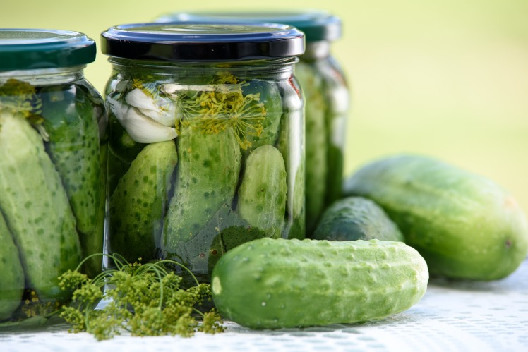 pickled-cucumbers-1520638_1920