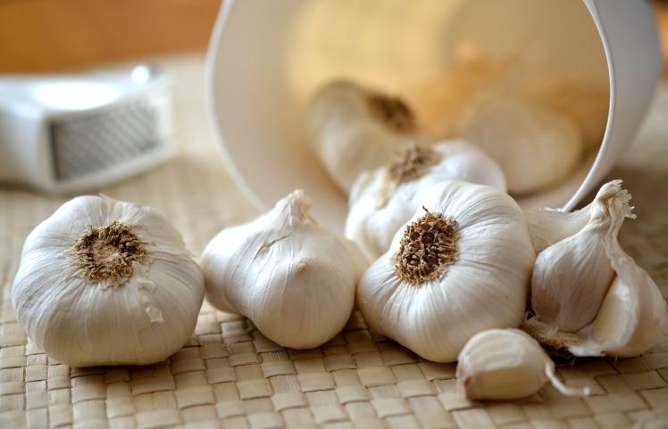 garlic-545223_1920